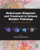 Endoscopic Diagnosis And Treatment In Urinary Bladder Pathology (Enhanced Edition)