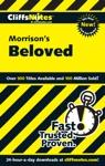 CliffsNotes On Morrisons Beloved