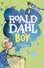 Roald Dahl - Boy artwork