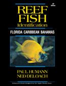 Reef Fish Identification - Florida Caribbean Bahamas