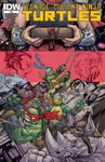 Teenage Mutant Ninja Turtles 49