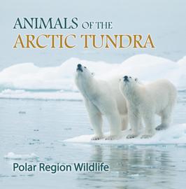 Animals of the Arctic Tundra: Polar Region Wildlife book