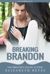 Breaking Brandon Fate 2