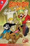 Scooby-Doo Team-Up 2013- 19