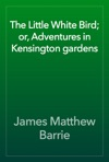 The Little White Bird Or Adventures In Kensington Gardens