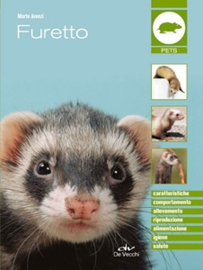 Furetto Book Cover