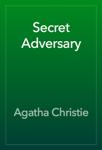 Secret Adversary