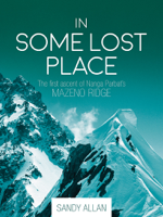 Sandy Allan - In Some Lost Place artwork