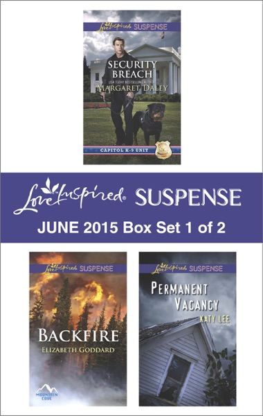 Love Inspired Suspense June 2015 - Box Set 1 of 2 - Margaret Daley, Elizabeth Goddard & Katy Lee book cover