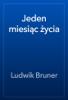 Ludwik Bruner - Jeden miesiД…c Ејycia artwork