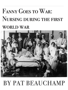 Fanny Goes to War: Nursing during the first world war Summary