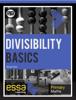 Zainab Patel - Divisibility Basics artwork