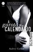 A garota do calendário: Dezembro Book Cover