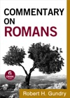 Commentary On Romans Commentary On The New Testament Book 6