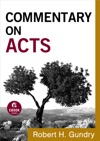 Commentary On Acts Commentary On The New Testament Book 5
