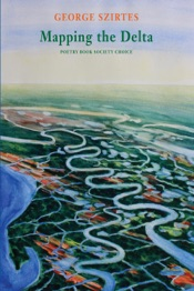 Download and Read Online Mapping the Delta