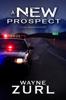 Wayne Zurl - A New Prospect artwork