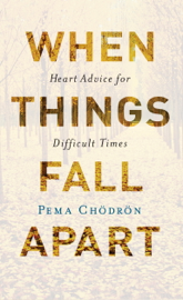 When Things Fall Apart book