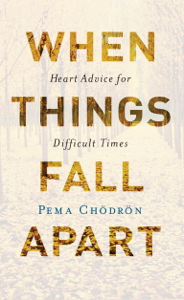 When Things Fall Apart Summary