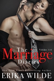 The Marriage Diaries (Volumes 1-4) PDF Download