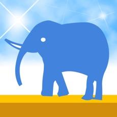 Activities of Elephant Rave