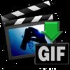 Total Video2Gif - effectmatrix