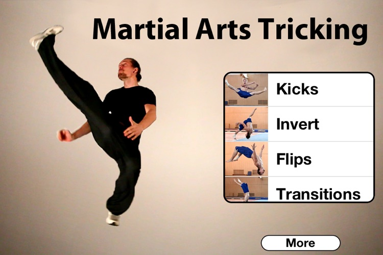 Martial Arts Tricking