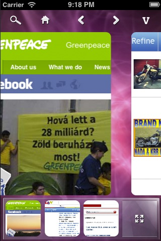 Panoramic Web Browser screenshot-3