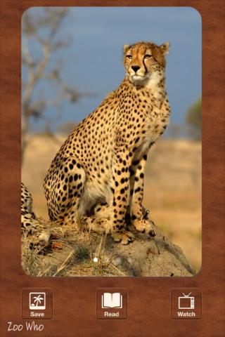 Zoo Who? - An Animal Encyclopedia screenshot four