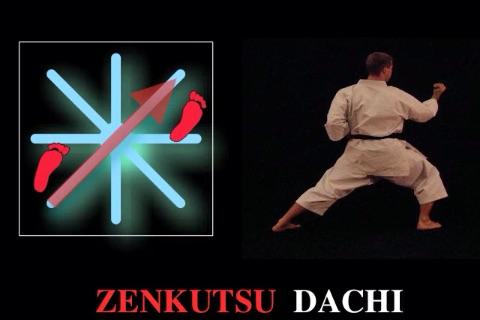 iKata Karate BASIC screenshot-3