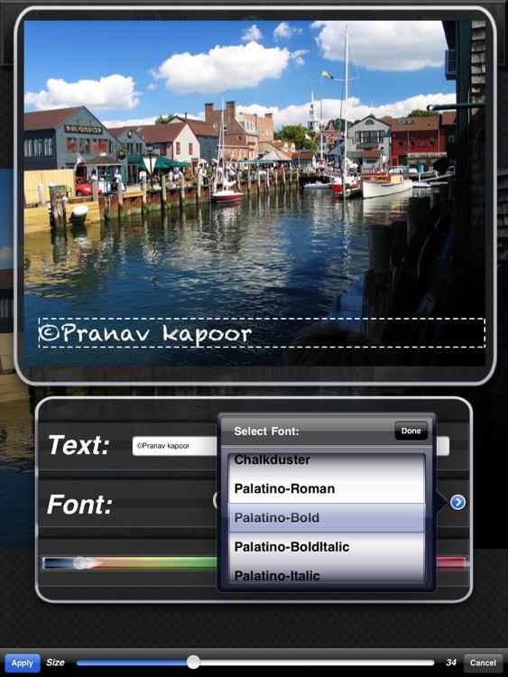 Iris Photo Suite for iPad screenshot-4