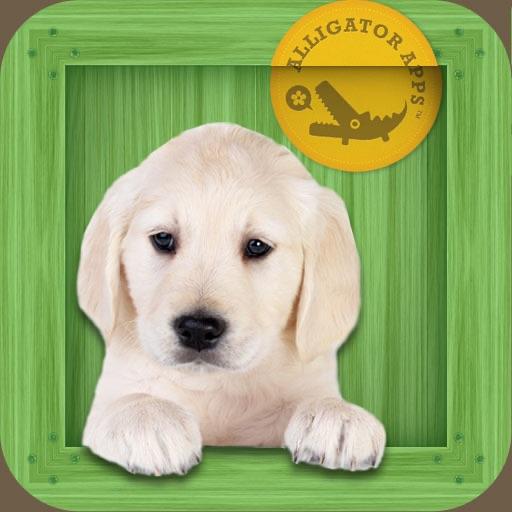 Animal Zoo - Flash Cards & Games hack