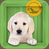 Codes for Animal Zoo - Flash Cards & Games Hack