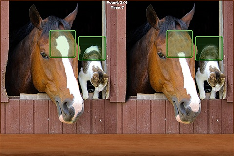 Horses Spot the Difference