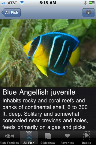 Reef Fish Florida and Caribbean screenshot-2