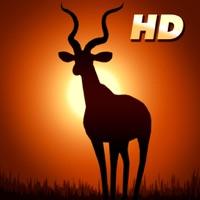 Codes for Deer Hunter: African Safari for iPad Hack