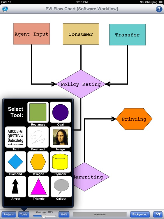 PVI - Flow Chart screenshot-0