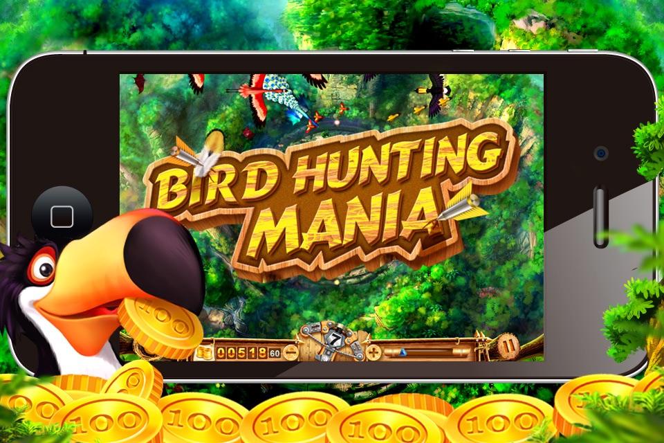 Bird Hunting Mania! Cheat Codes