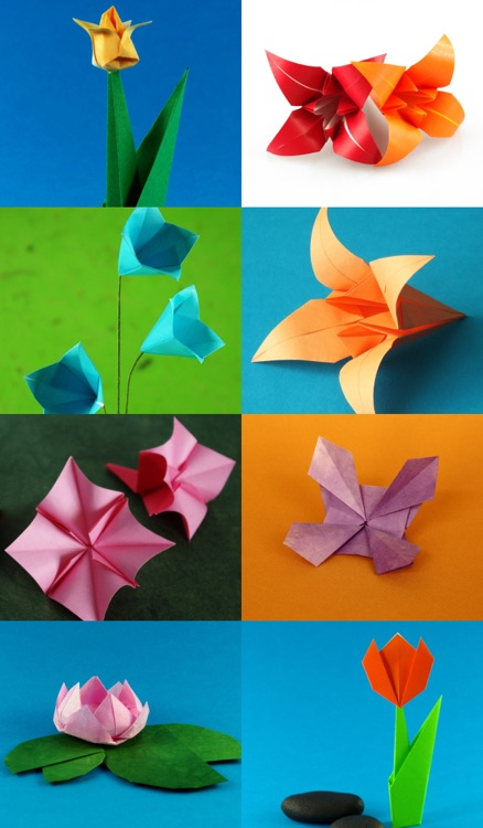 Origami Flowers screenshot-1