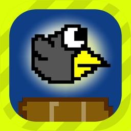 Crashy Crow