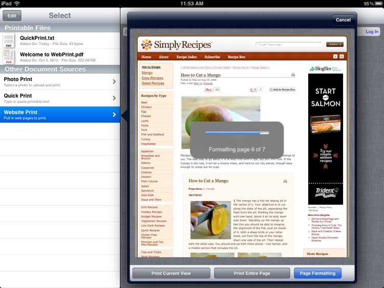 WebPrint for Print Manager Plus screenshot-3