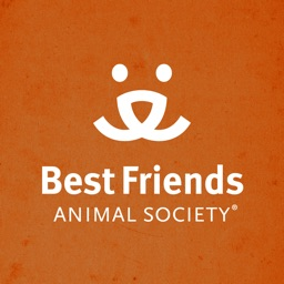 Best Friends Magazine HD