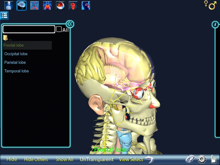 Human Body 3D for iPad screenshot-4
