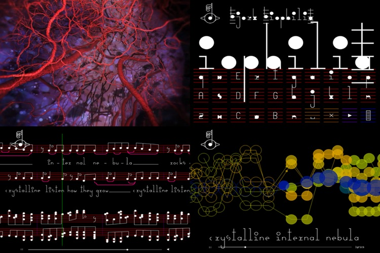 Björk: Biophilia screenshot-3