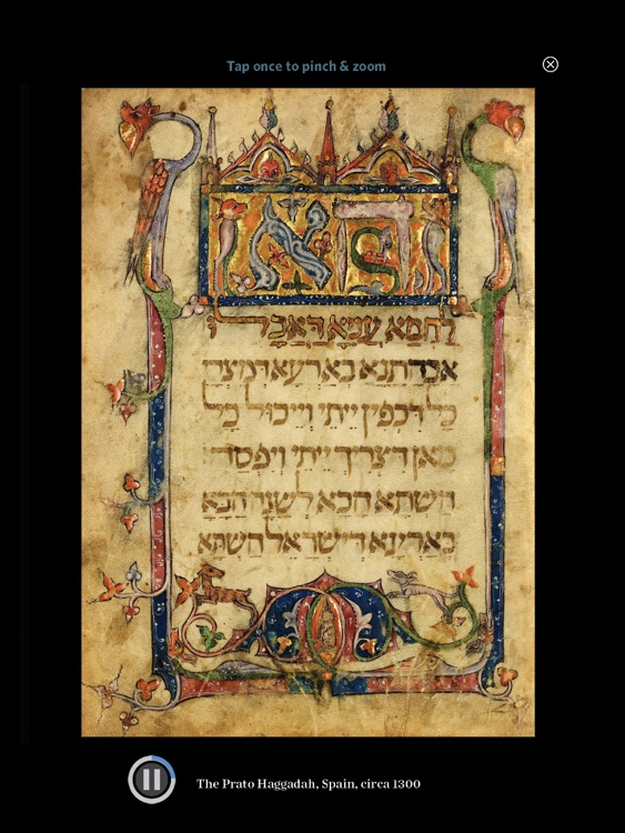 The Haggadah screenshot-2