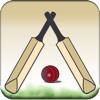 Swing Cricket 2