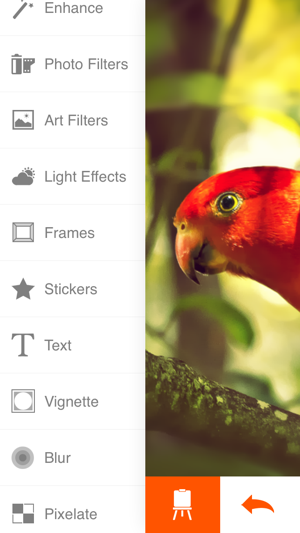 Phoenix Photo Editor Screenshot