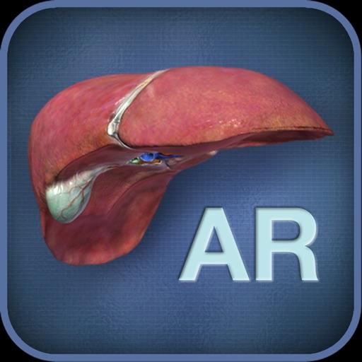 AR Liver Viewer