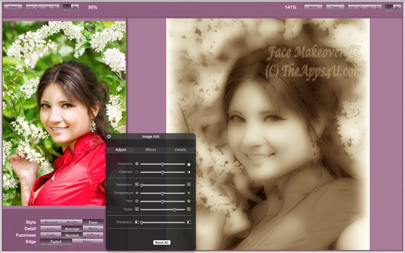 Face Makeover EZ Screenshot