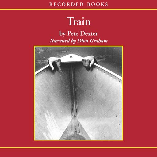 Train (Audiobook)